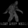 Waist Deep Media