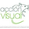 accion visual