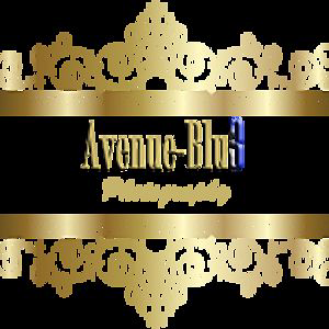 Profile picture for AVENUE BLU3