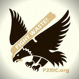 Profile picture for P2Ric Webinars