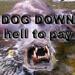 dogdown