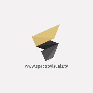 Profile picture for Spectro Visuals