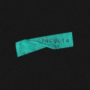Profile picture for Inculta TV
