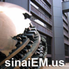 Sinai EM Ultrasound