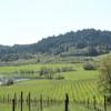 Michel-Schlumberger Winery
