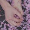 pinkrabbits