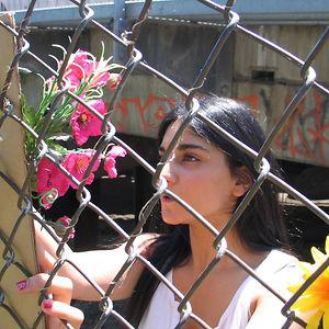 Profile picture for nikoo nooryani