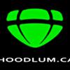 TheHoodlums