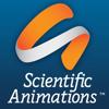 Scientific Animations