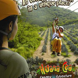 Huana Coa Canopy & Huana Coa Canopy on Vimeo