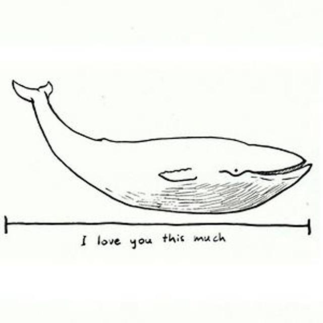 Картинки китов для срисовки с надписями