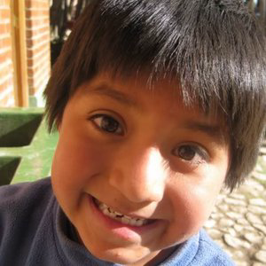 Profile picture for Sustainable Bolivia