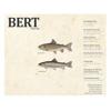 BERT Magazine