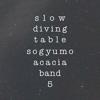 Sogyumo Acacia Band