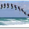 New Wave Kiteboarding