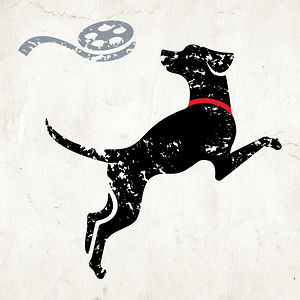 Profile picture for Lucky Dog Films