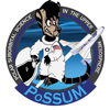 Project PoSSUM