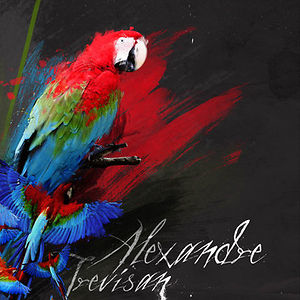 Profile picture for Alexandre Trevisan