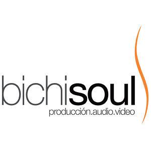 Profile picture for Bichi Soul Producciones