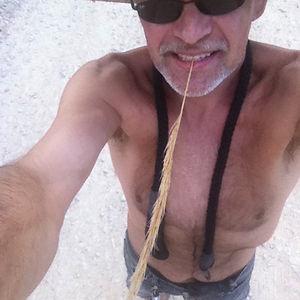 Profile picture for Sunseaker