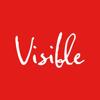 Visible Studio