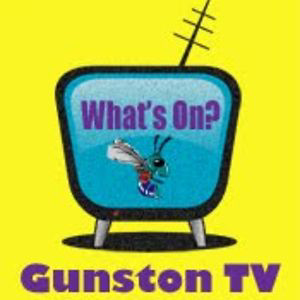 Profile picture for gunstontv