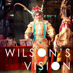 Profile picture for WILSON'S VISION
