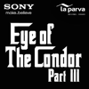 Eye of the Condor