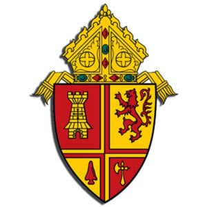 Profile picture for Diocese of St. Petersburg