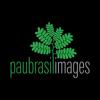 Pau Brasil Images