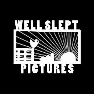 Profile picture for wellsleptpictures