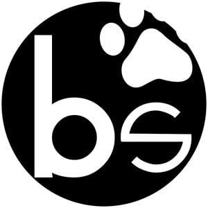 Profile picture for Brauni Studio