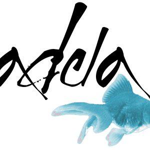 Profile picture for adela suma