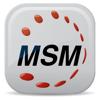 MockSpeed Media