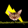 Thunder Cats Productions