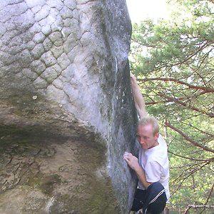 Profile picture for Manuel Marquès (Fontainebleau)