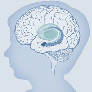 Profile picture for Center on the Developing Child
