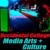 Occidental Media Arts & Culture