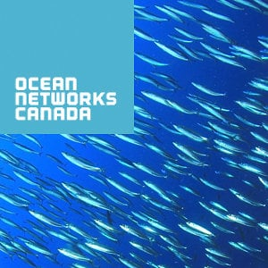 Profile picture for Ocean Networks Canada