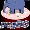 PUG Bologna