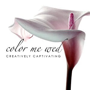 Profile picture for COLOR ME WED /The Color Me Group