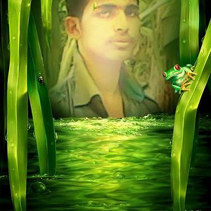 Profile picture for shah jamal