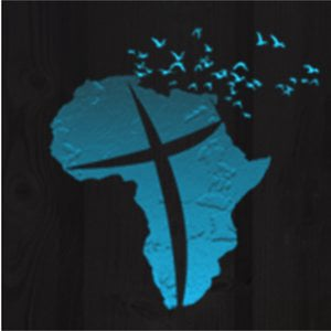 Profile picture for Arise Africa International