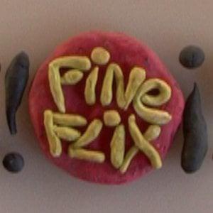 Profile picture for Fine Flix Films