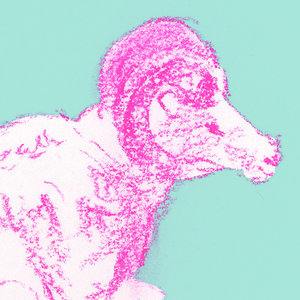 Profile picture for Iiyama Saki