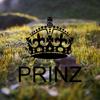 Prinz production
