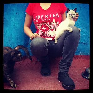 Profile picture for gata esteparia