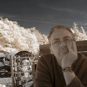 Profile picture for David Bird