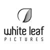 whiteleafpictures