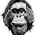 Orangutan Foundation Intl